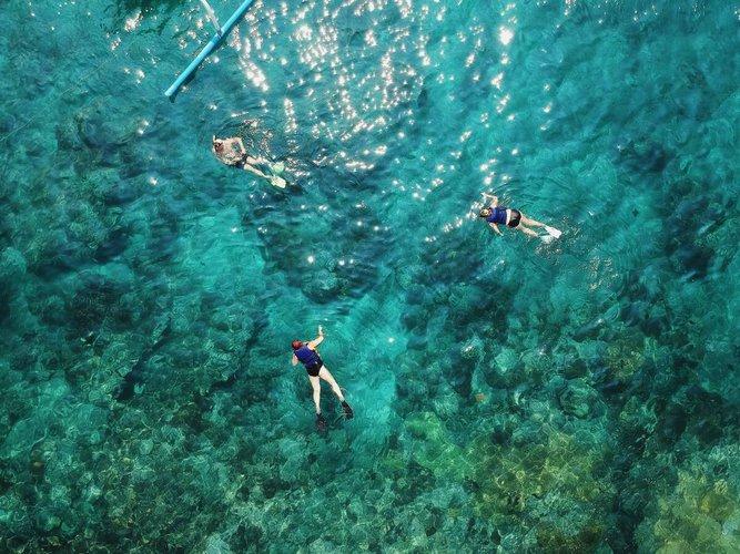 sailo-bimini-boat-rental-snorkeling
