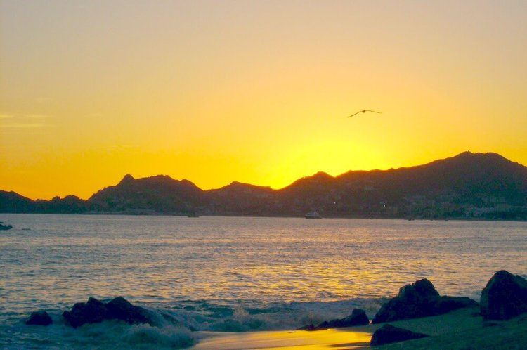 cabo-san-lucas-playa-solmar-sailo-boat-yacht-rental