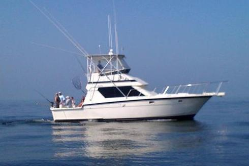 Enjoy a Fun-Filled, Action-Packed Day of Sport Fishing