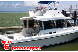 Bay/Jetty or Deep Sea Fishing on this Scotty Craft