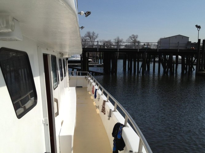 Boat rental in Flushing, NY