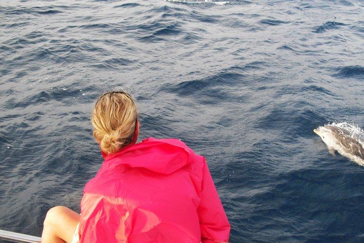 This 38.0' Lagoon cand take up to 12 passengers around Palma de Mallorca