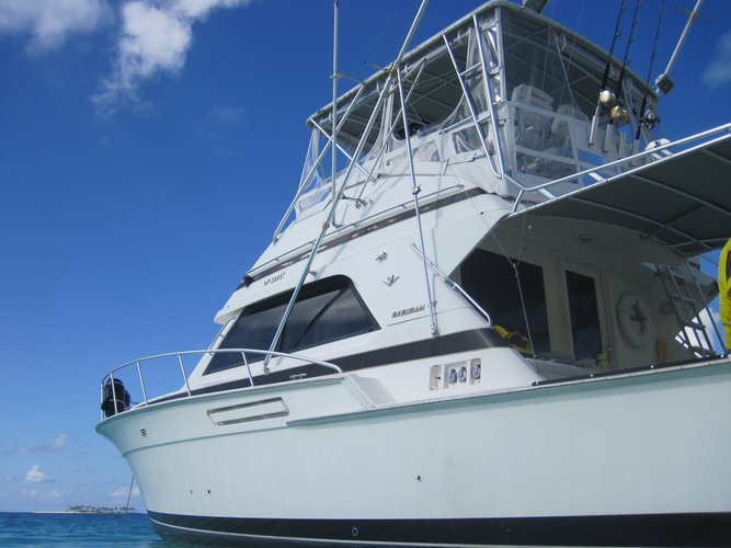Boat for rent Bertram 43.0 feet in Old Pioneer Dock, Bahamas