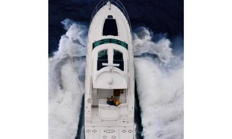 Boat for rent SEA RAY 47.0 feet in SAFE HARBOUR CAPRI, NY