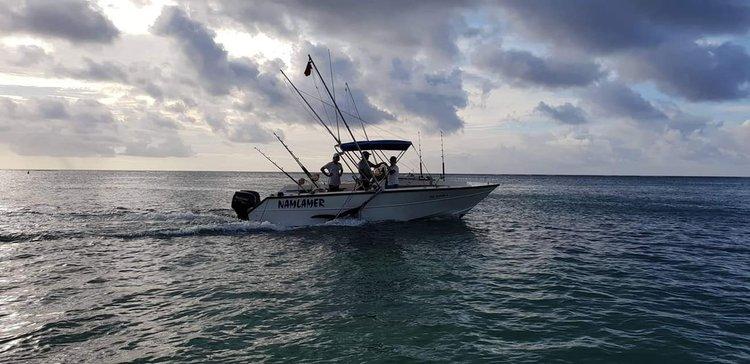 Have fun in sun in Mauritius aboard this motor boat!