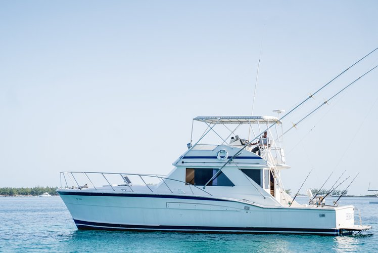 Up to 12 persons can enjoy a ride on this Chris Craft boat
