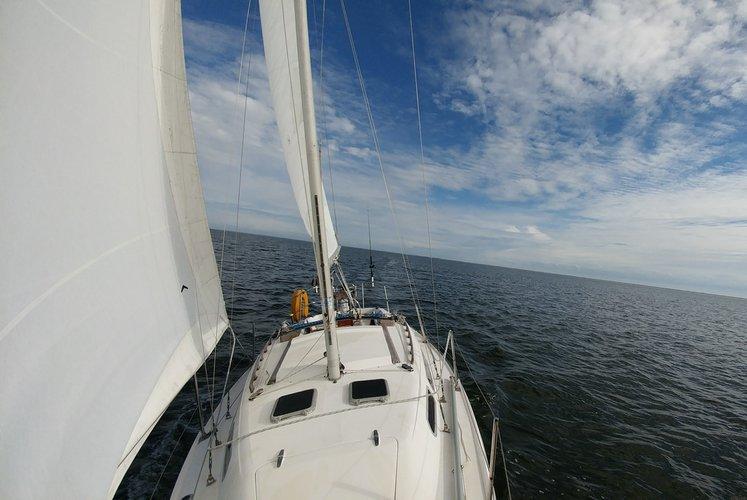 Sail Away On The Bay