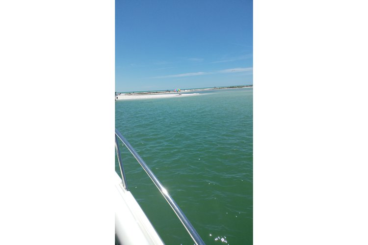 Boat for rent Sea Ray 31.0 feet in Turtle Cove Marina, FL