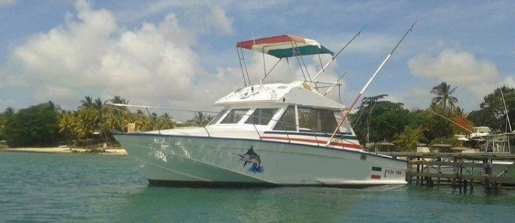 Discover Port Louis in style boating on this motor boat rental