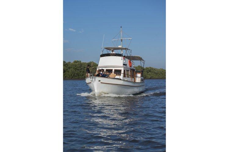 Discover Penha De França surroundings on this Custom Custom boat