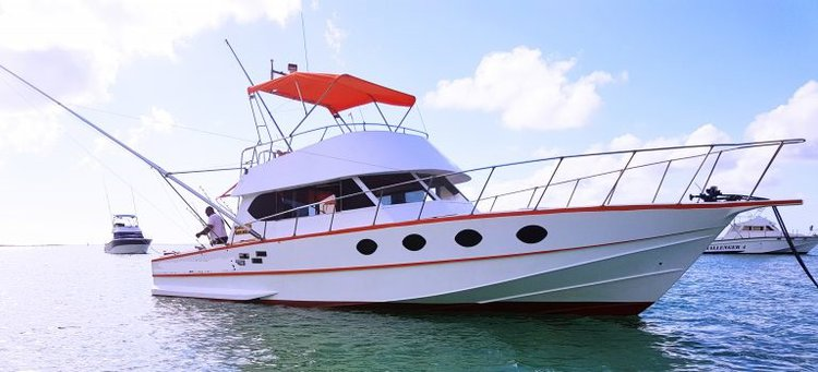This motor boat rental is perfect to enjoy fishing