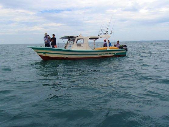 Experience Kuala Rompin on board this elegant motor boat