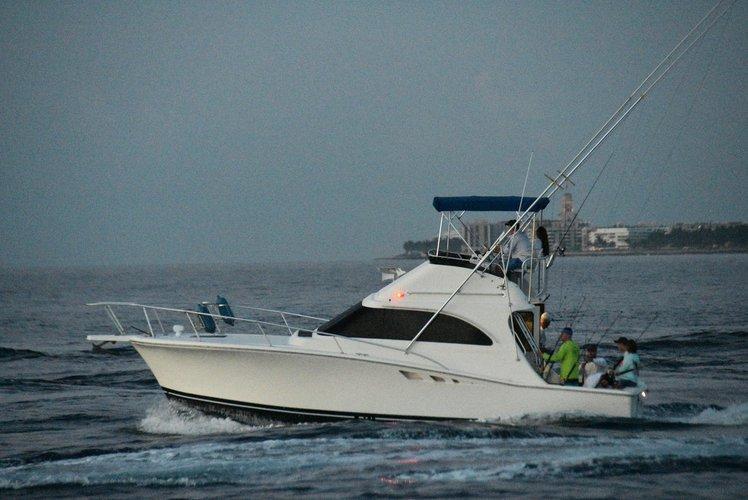 Sportfishing, Dock & Dine, Scenic Cruises & More!