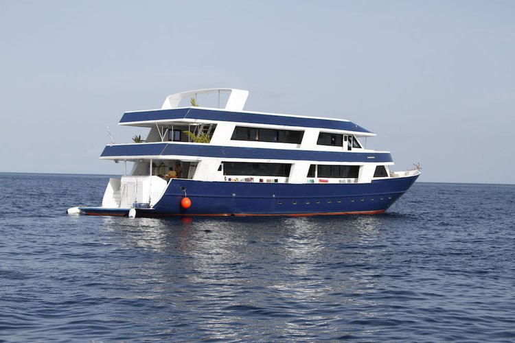 Hop aboard this amazing motor boat rental in Maldives!