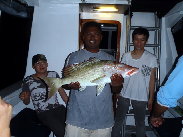 Up to 25 persons can enjoy a ride on this Offshore sport fishing boat