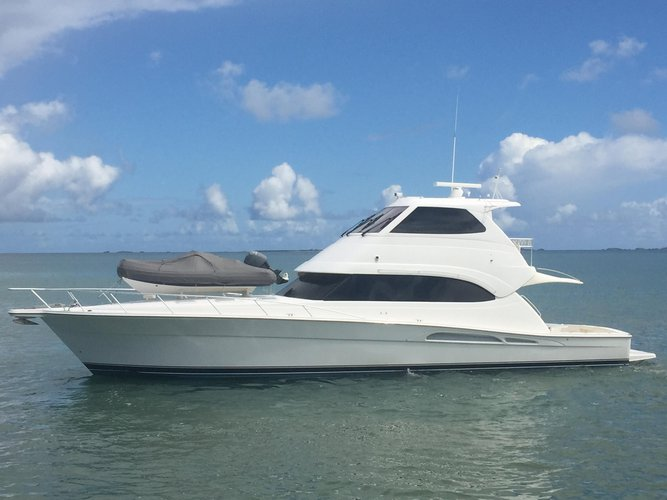 Have fun in the sun on this Queenstown motor boat charter