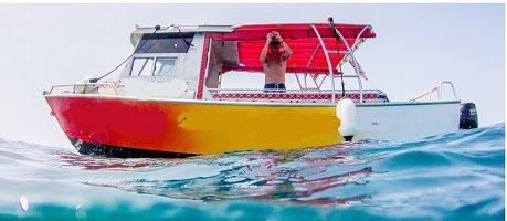 Enjoy luxury and comfort on this Nadi motor boat rental