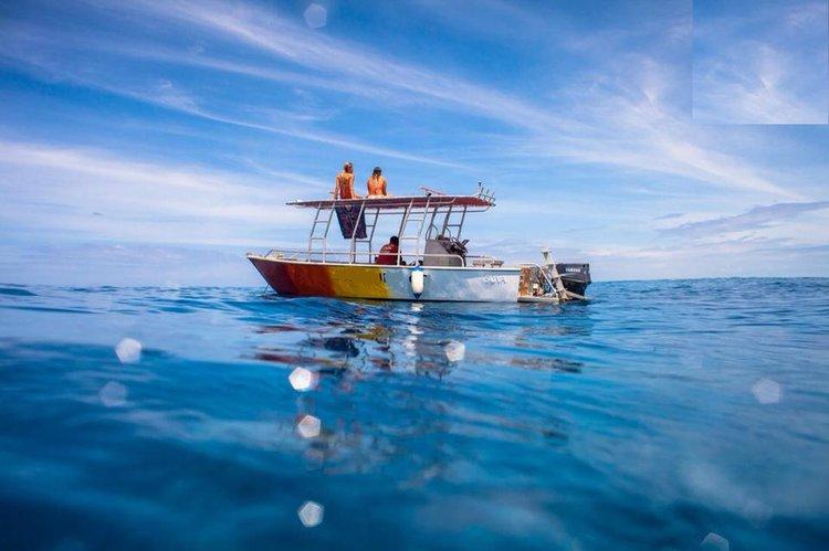 This motor boat rental is perfect to enjoy Nadi