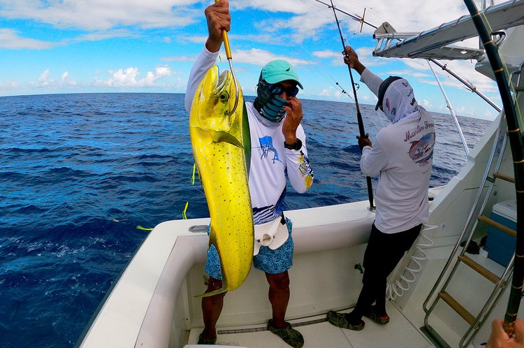 Boat for rent phoenix 36.0 feet in Marina Cap Cana, Dominican Republic