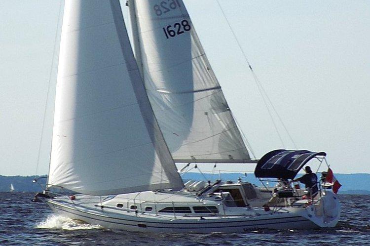 Sailing NYC with Brooklyn Sail