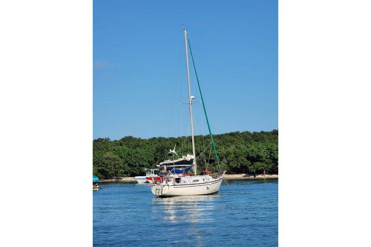 Sailing Gourmet