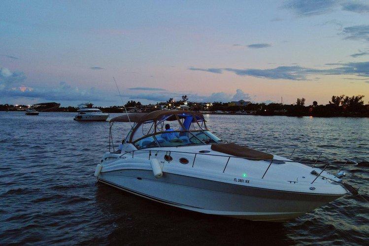 Boat for rent Sea Ray 34.0 feet in MBM - Miami Beach Marina, FL