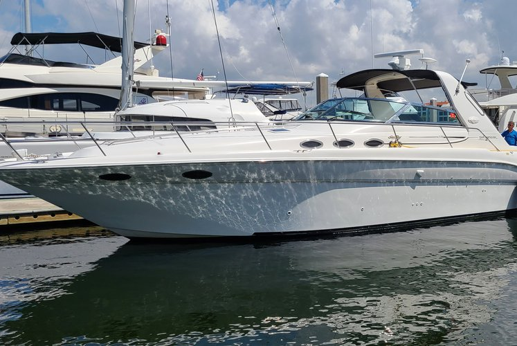 """39"""" Sea Ray Yacht in Miami Beach with Captain Included"""