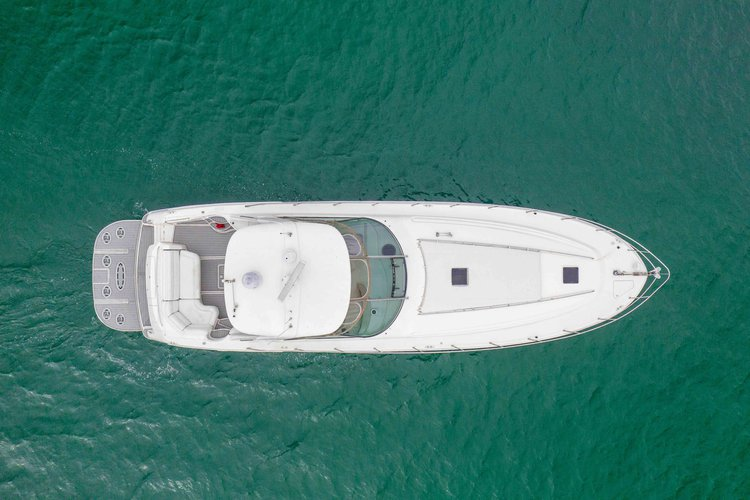 Up to 12 persons can enjoy a ride on this Sea Ray boat