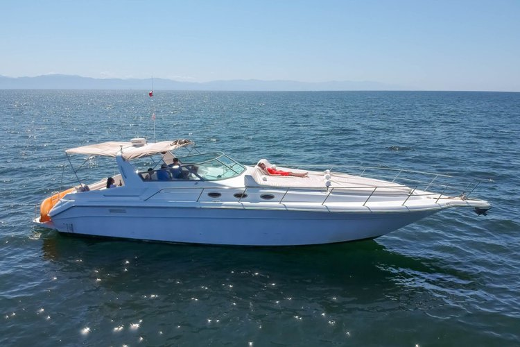 Go on a nautical experience  on this comfortable motorboat
