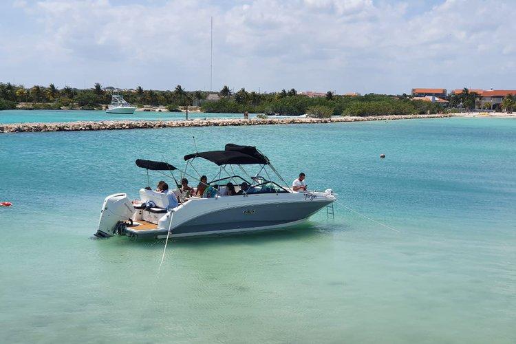 Sea Ray's 25.0 feet in Puerto