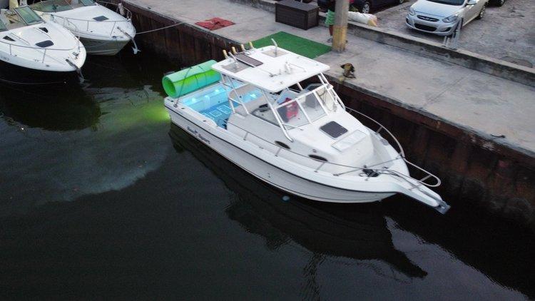 Sea STar Walkarounf 30 feet