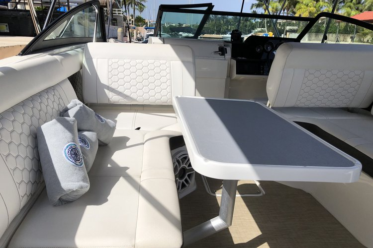 Sea Ray boat for rent in Puerto