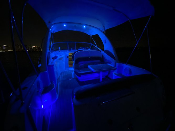 This 33.0' Searay cand take up to 12 passengers around Miami