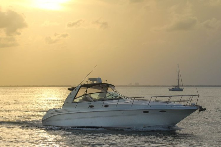 CRUISE MIAMI'S BEAUTIFUL WATERS ON THIS 45 FOOT SEA RAY YACHT! 🌞