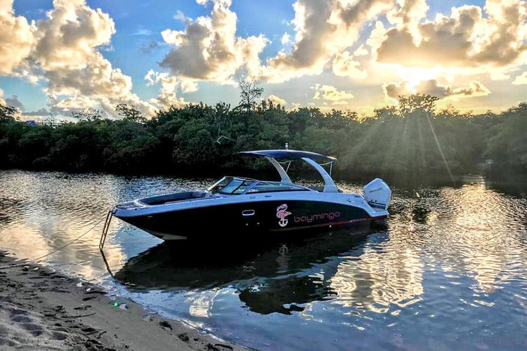 Wonderful charter - boat rental with gas + parking + ice & water included